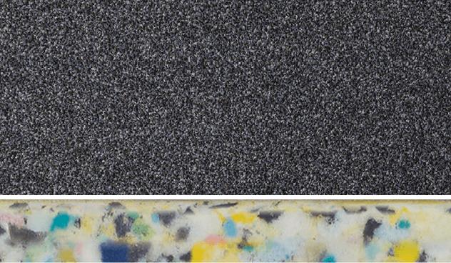 Floors for Paws | Carpet Court