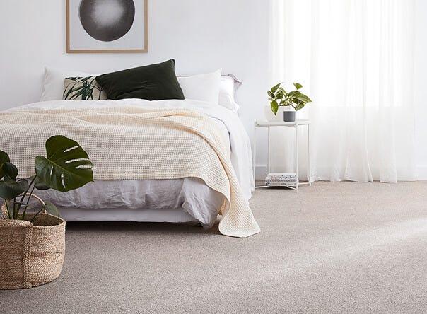 carpet court autumn catalogue