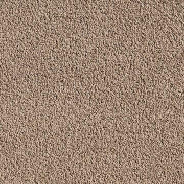 carpet_essex_place