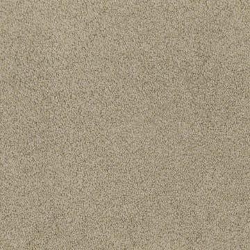 Carpet_Universal_Eggshell