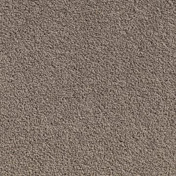 carpet_plaza_twist