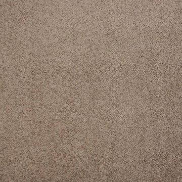 carpet_studio_style