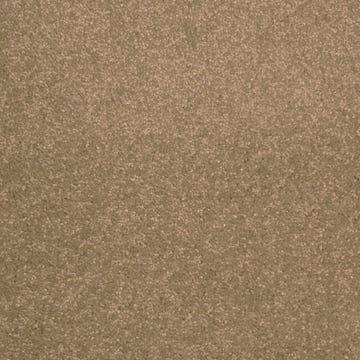 carpet_tamarind_park