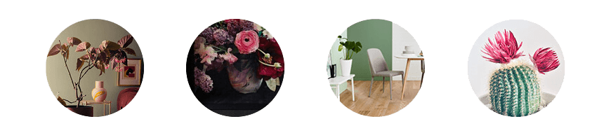 Botanica styles to suit your personality