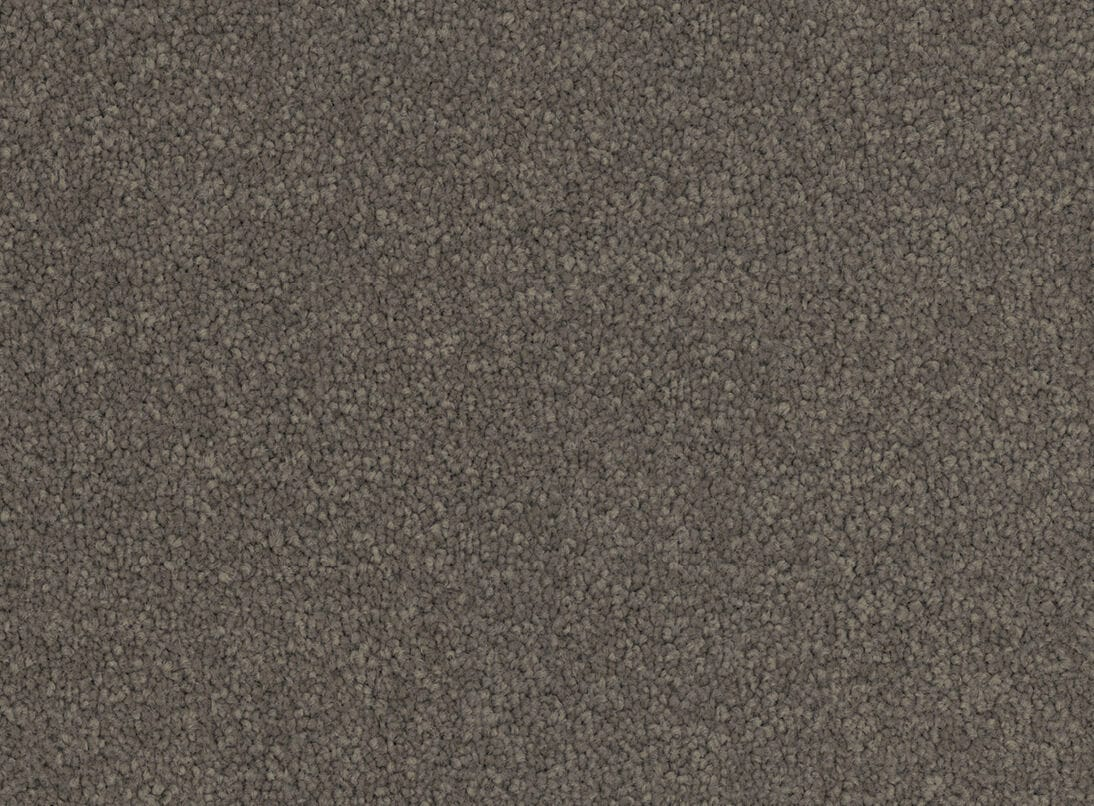new carpet in store now