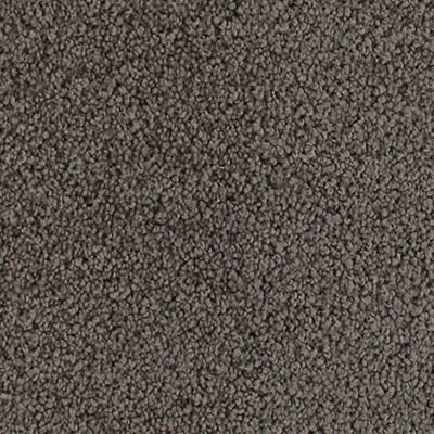 Dark Colour Carpet