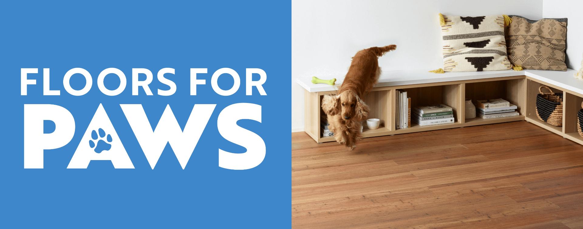 Floors for Paws  Carpet Court