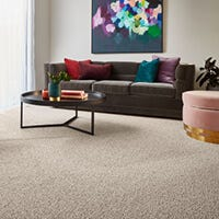 How to clean carpets?