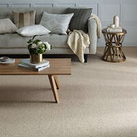 Where to buy carpets in NT?