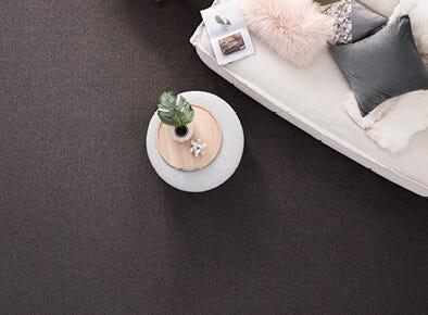 Choosing a Charming carpet on sale