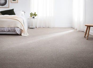 Classic Soft carpet trends on sale